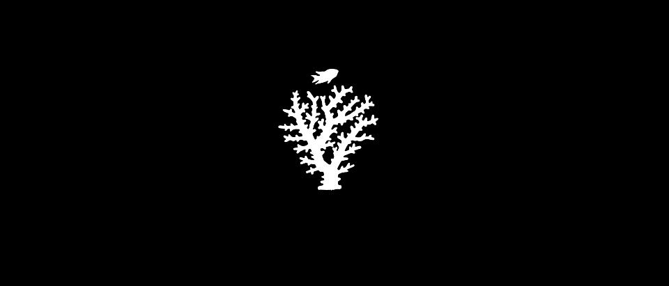 logo_IYOR_2018_logo_IYOR_black